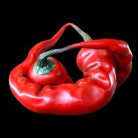 190517140250_red chilli 1_full