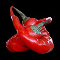 190517140250_red chilli 2_full